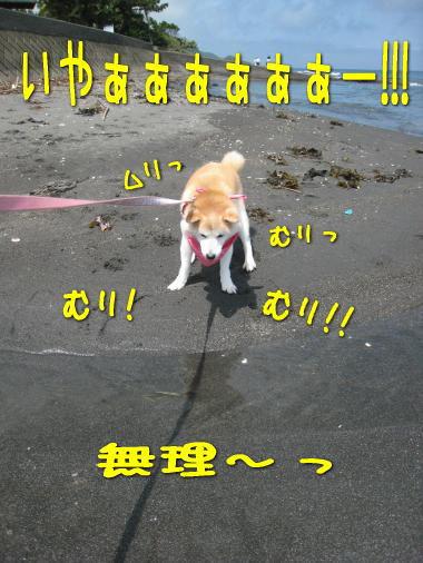 溺れちゃうカモ―!!