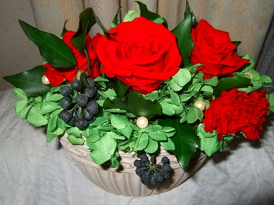 20090218-6.jpg