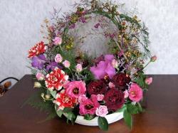 花カトレア