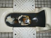 汚いトイレ080727
