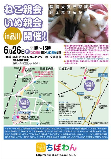 nekoinuoyakai20110626_poster1.jpg
