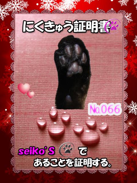 2011032820470541d.jpg