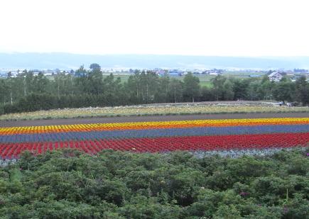 furano2009c.jpg