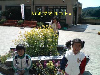 SN330060_0001.jpg