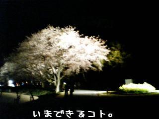 SN330083_0001.jpg
