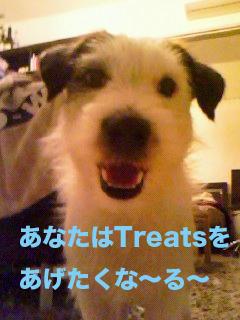 treatsくれ