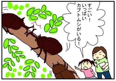 夏休みの理科研究4