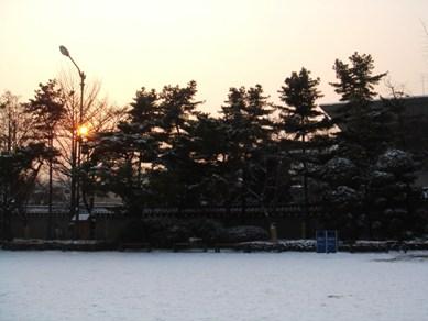 200901散歩4