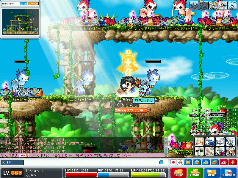 MapleStory_2009_0613_210003_109_20090625090038.png