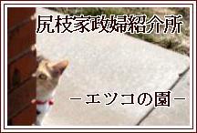 尻枝家政婦研究所