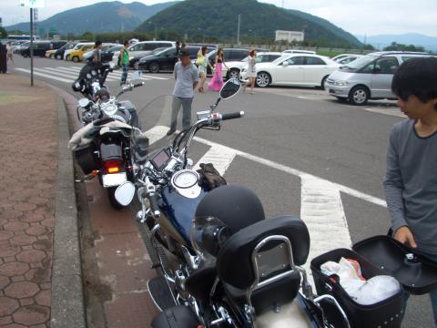 snap_chikuwabuta_200972215828.jpg