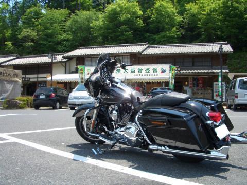 snap_chikuwabuta_20097318273.jpg