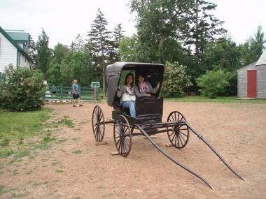 アンが乗ってきた馬車