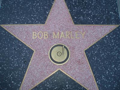 ボブマリーの星プレート