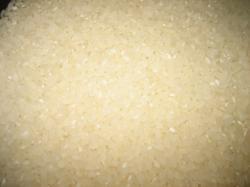 きれいなお米ですね♪
