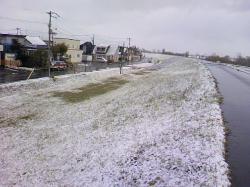 堤防の斜面にも雪が積もって・・・