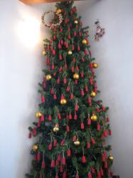 天井まで届きそうな背高のツリー