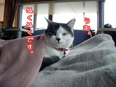 2008-10-26-1.jpg