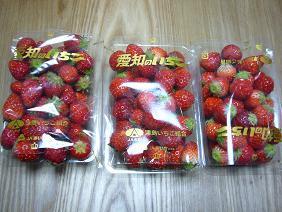 福子さんからもらった苺