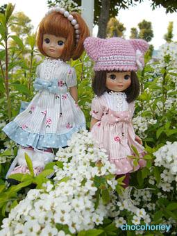 お花とベチ