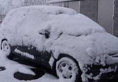 P1000866雪