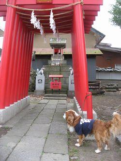 ショコラ 004神社2