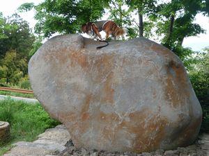 P1000207巨石
