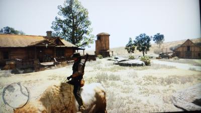 綺麗な牧場
