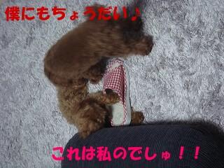 チョコ&バニラ 001s-