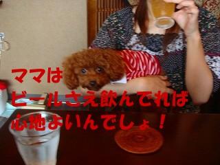 DSC214s-.jpg