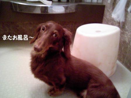 変換 ~ お風呂JPG