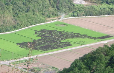 たんぼの姫路城