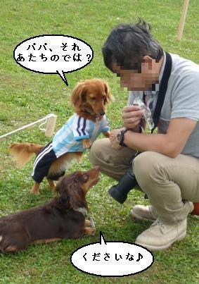 yanyanさん運動会2008秋 233