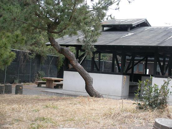 2月26日朝の柳島キャンプ場