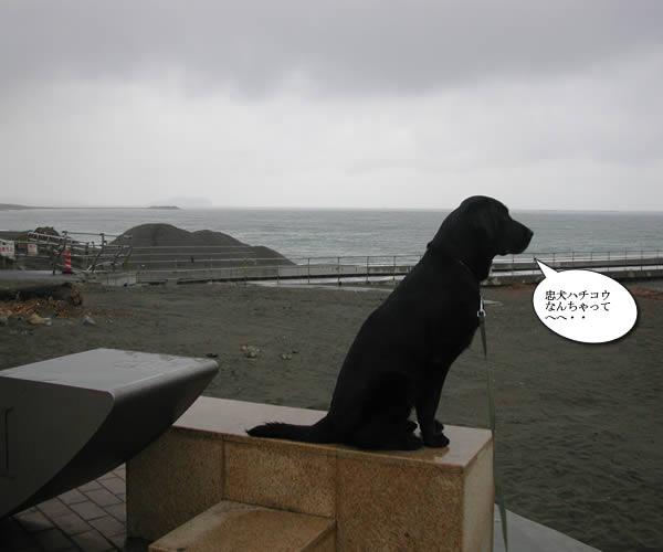 雨の茅ヶ崎モニュメント2