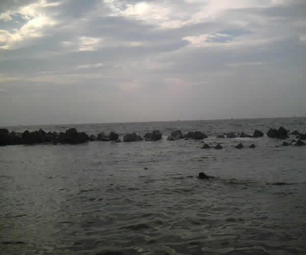 柳島でスイミング