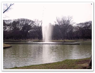 2011032206f.jpg