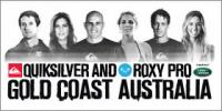 quiksilver_and_roxy_pro.jpg