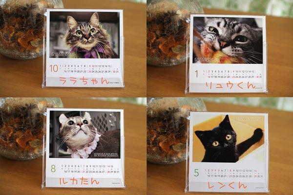 2011_01_17_004.jpg