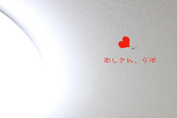 2011_02_15_7.jpg