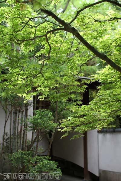 2011_05_06_13.jpg