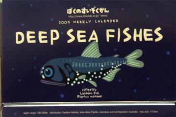 深海魚カレンダー
