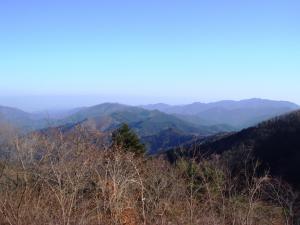2008010606.jpg