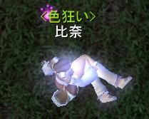20081108_02.jpg