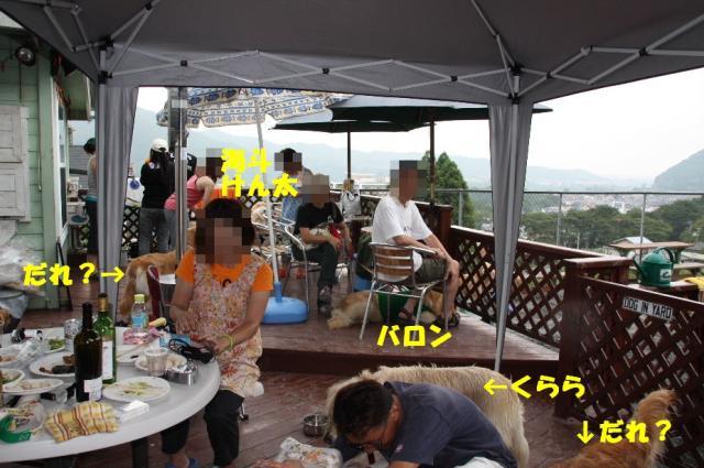IMG_0495-2.jpg