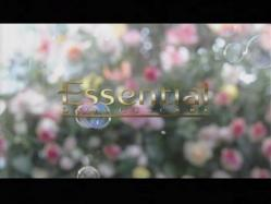 SASAKI-Essential1111.jpg