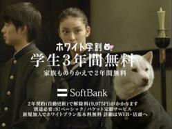 Seiko-Softbank1105.jpg