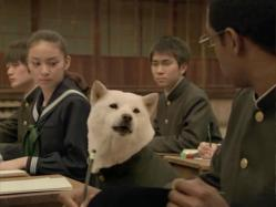 Takei-Softbank1113.jpg