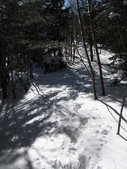 雪の登り道