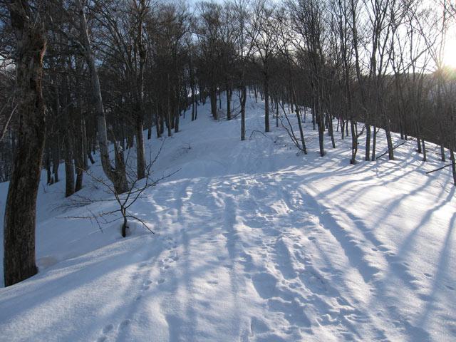 スキーの跡